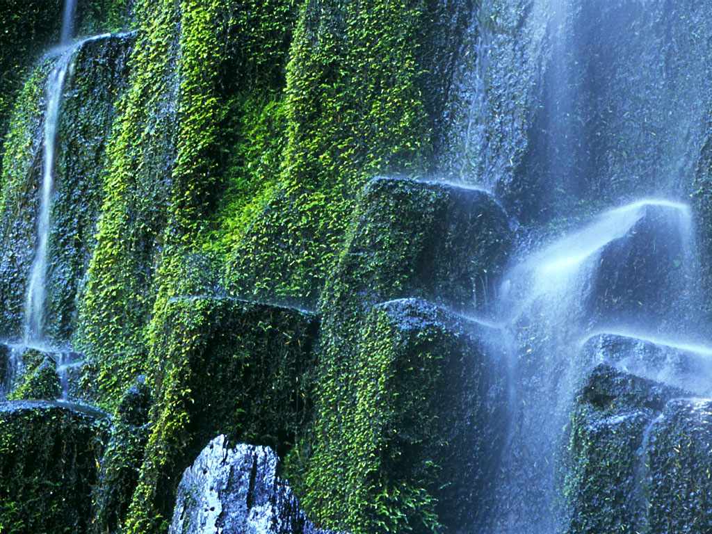 proxy_falls2c_willamette_national_forest2c_oregon.jpg